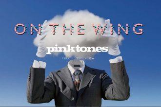pink tones box