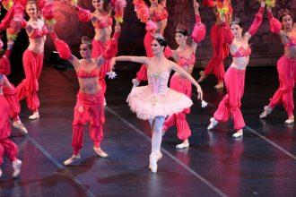 Ballet Nacional de Letonia logo